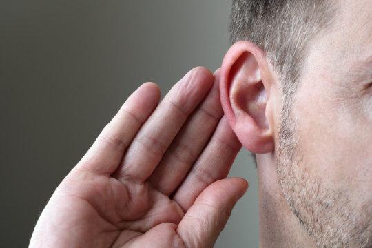 ears-brain